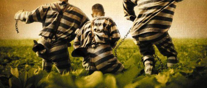 prison-escape1-825x510