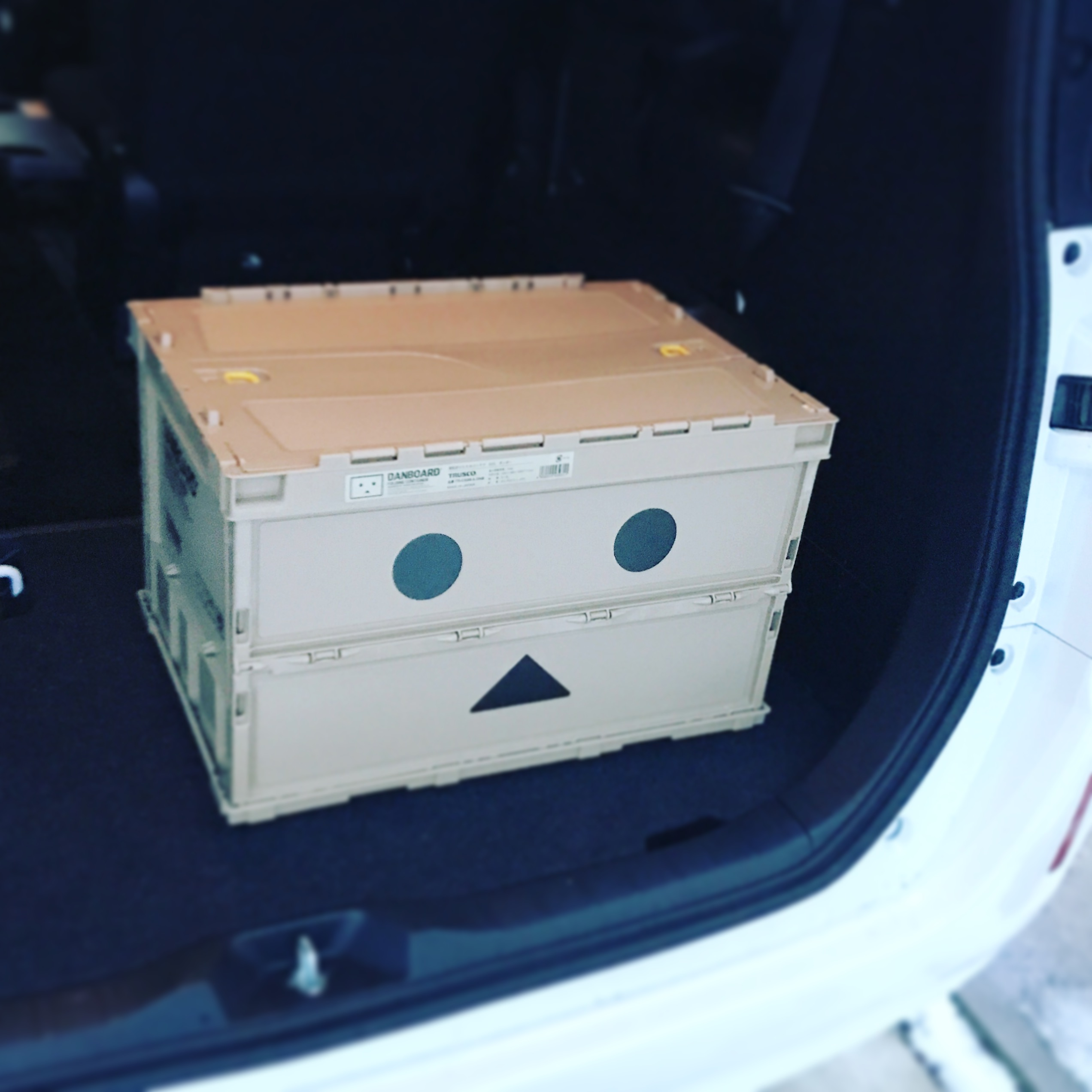 danboard-container